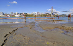 Beach, river and city at springtime Stock Photography