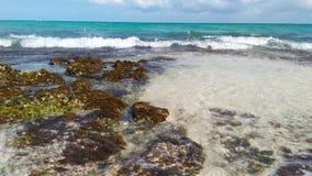 Rocks sea sand on the beach of the Riviera Maya. Beach of rivera maya royalty free stock photos