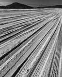 Beach Road. Abstract tiremarks on sand on beach in black and white. Destination journey Stock Photos