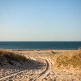 Beach road in Montauk, Long Island, NY stock photos