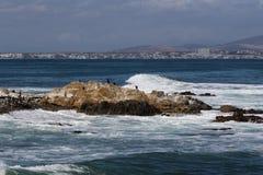 Beach at Robben Island South Africa stock photos