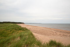The beach at Robinsons Island on PEI Royalty Free Stock Photo