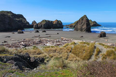 Beach and Rock Formation at Redwood National Park. Coast Beach, driftwood logs and Rock Formation at Redwood National Park. California Stock Image