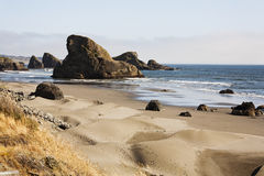 Beach rock. The Oregon coast sand dunes. Sand dunes in the front with brown grass and footprints. mid picture the beach with some water and rocks. Back of the Royalty Free Stock Photography