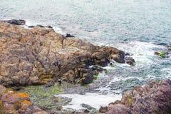 Beach rock rocks sea sky Stock Images