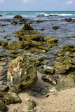 Beach rock and stone cabin  in  republica dominicana Royalty Free Stock Image
