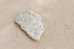 Beach and Rock Stock Photo