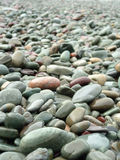 Beach Rocks. With nice perspective Stock Photography