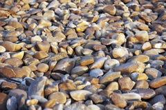 Beach Rocks Background Royalty Free Stock Photo