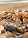 Beach rocks. Brighton beach, UK Stock Images