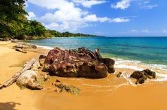 Beach rocks Masoala Royalty Free Stock Photo