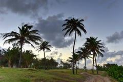 Beach and Rocks off San Juan, Puerto Rico Stock Photo