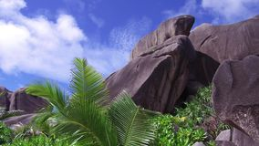 Beach with rocks and palm trees on seychelles. Travel, landscape and nature concept - beach with rocks and palm trees on seychelles stock video footage