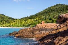 Beach rocks sea palms island Royalty Free Stock Photos