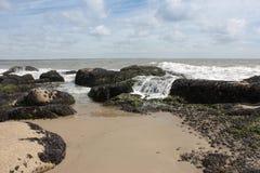 Beach Rocks with seashells and seaweed. Beach Rocks in Rocha state, northern Uruguay Royalty Free Stock Photos