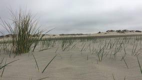 Beach on Romo island - Denmark. stock footage