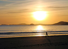 Beach runner and sunset Royalty Free Stock Image