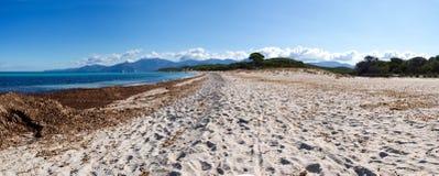 The beach of Saleccia Royalty Free Stock Photos
