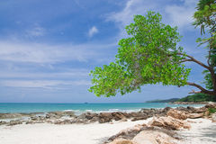Beach of Samed island Stock Photography