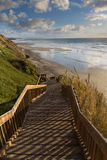 Beach in San Diego. Wooden steps leading down to a beach at low tide in San Diego, California, U.S.A Stock Image