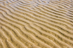 Beach sand. Waves of sand on an ocean beach in a low tide royalty free stock images