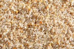 Beach sand background Royalty Free Stock Image