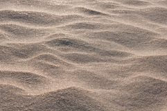 Beach sand background close up Stock Images