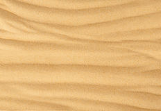 Beach sand background Stock Image