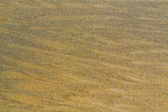 Beach sand background Stock Photography