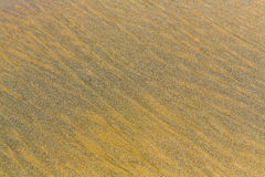 Beach sand background Royalty Free Stock Photography