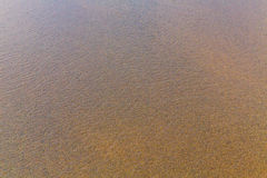 Beach sand background. Royalty Free Stock Image