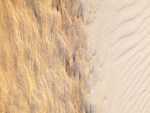 Beach Sand Background. Sand Texture. Brown sand Royalty Free Stock Images