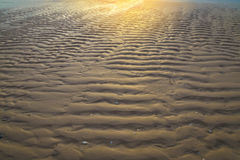 Beach sand background at sun rise morning time Royalty Free Stock Photo