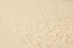 Beach sand. Beach background and sand texture Royalty Free Stock Photography