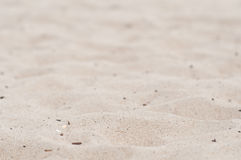 Beach sand background or texture. Selective focus Stock Photo