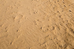Beach sand. Background, in winter Stock Photo