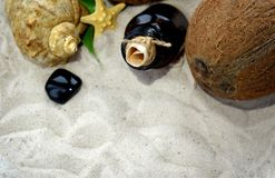Beach sand, a bottle with a letter inside, seashells and starfish. Stock Image