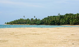 Beach sand and Caribbean tropical shore Costa Rica Stock Photos