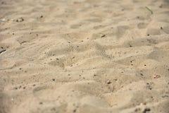 Beach sand close-up royalty free stock image