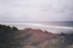 Beach and Sand Dune.nBeach covered with Marram Grass, Germany, Sylt, List. Royalty Free Stock Photo