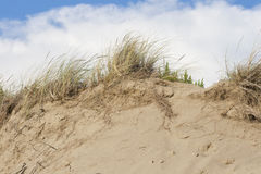 Beach sand dunes against sky Royalty Free Stock Image