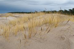 Beach with sand dunes Royalty Free Stock Photography