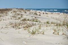 Beach sand dunes Stock Photos