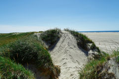 Beach with sand dunes and a path to the sea Royalty Free Stock Photography