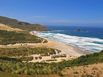 Beach and sand dunes. Sandfly Bay on Otago Peninsula, New Zealand. The bay is named for the sand blown up by the wind. Here are New Zealand's tallest sand dunes Royalty Free Stock Photography
