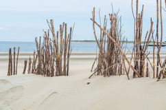Beach and sand dunes stock images