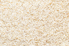 Beach sand grains Stock Image