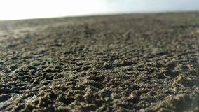 Beach Sand. I took this picture in Long Beach Washington Stock Photos