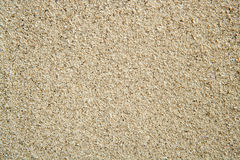 Beach sand perfect plain texture background Stock Images