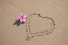 Beach sand with pink flower and Heart Shape Royalty Free Stock Photos